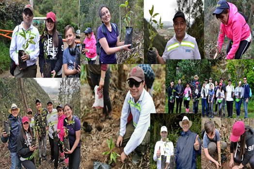 Planting native trees in the company of our Muiscas Indians