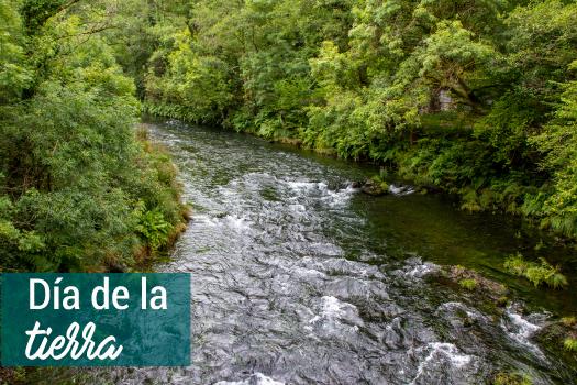 DIA DE LA TIERRA, UN LLAMADO PARA TODOS A HACER ALGO